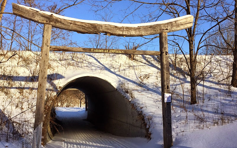 Outdoor Trips with Kids: Path of Life Sculpture Garden