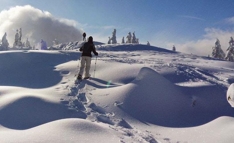 HOW-TO-TURN-TREKKING-POLES-INTO-SNOWSHOE-POLES