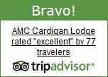 cardigan-bravo-trip-advisor