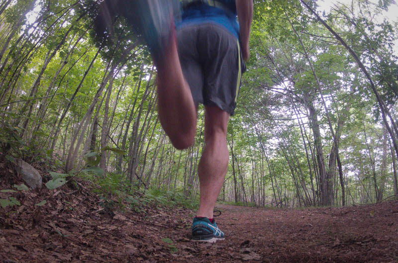 trail running in the Blue Hills