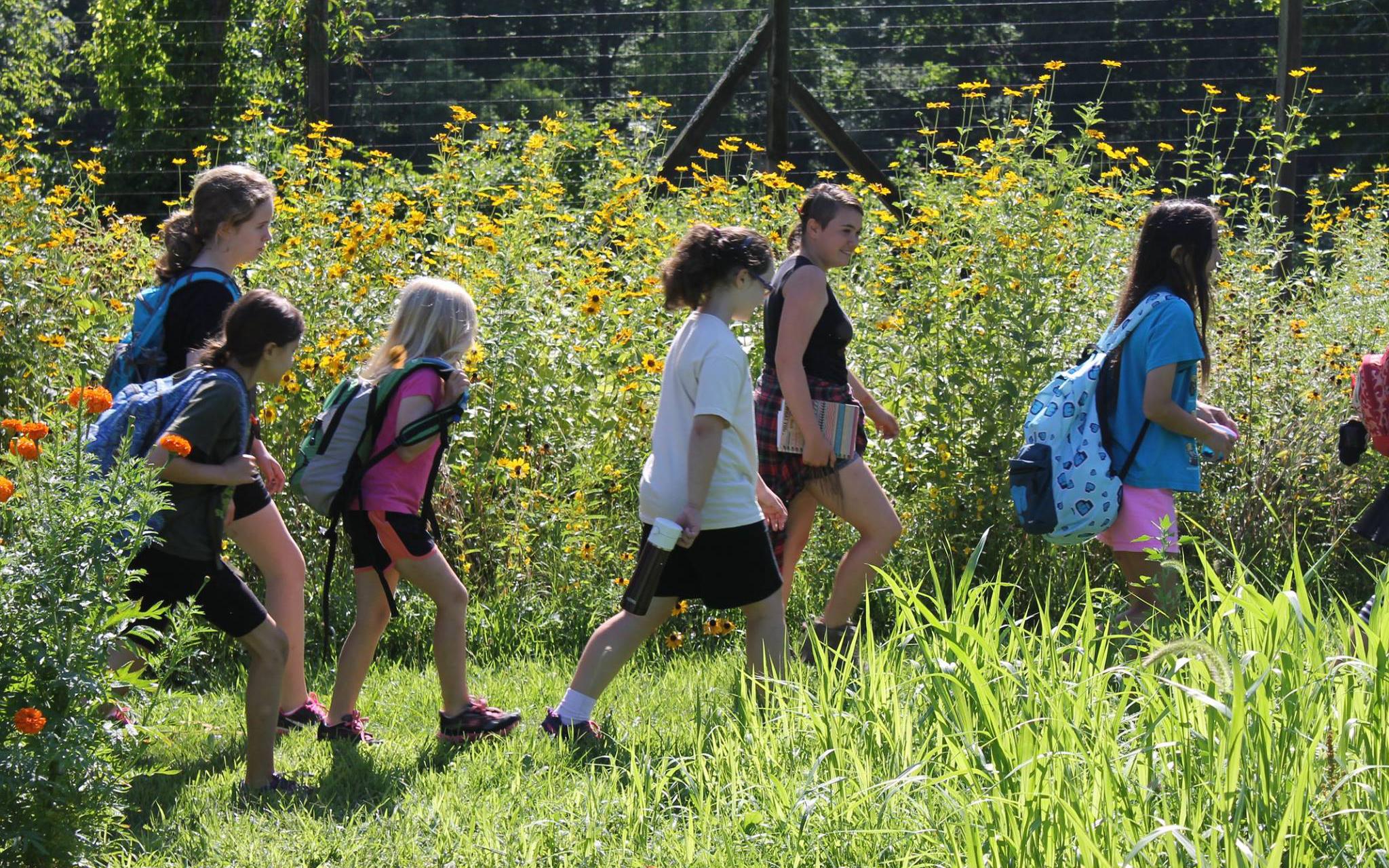 wildflower hikes teatown