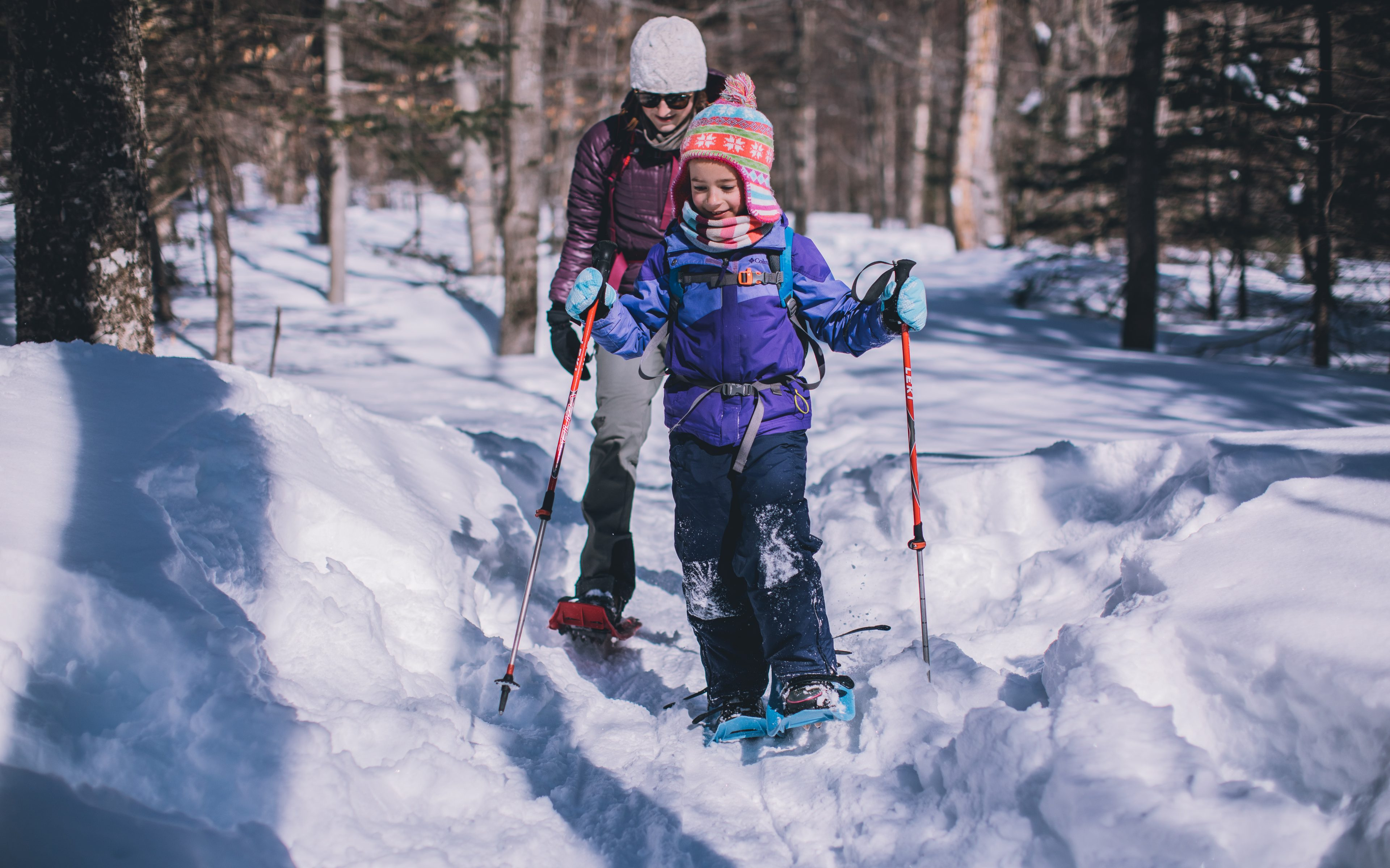 easy snowshoe hikes