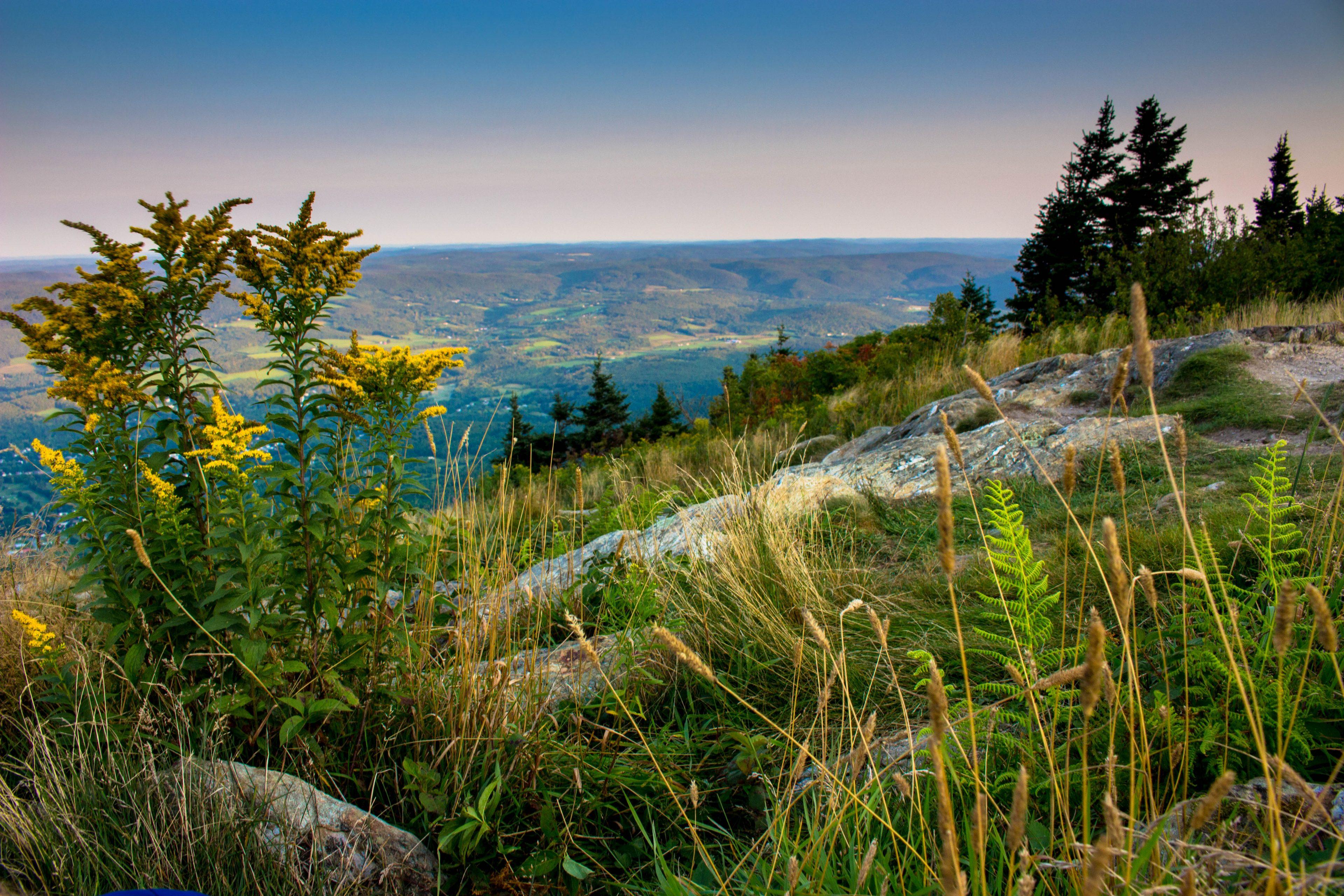 Mount Greylock Appalachian Trail