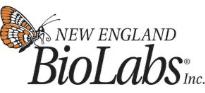 New England Bio Labs Inc.