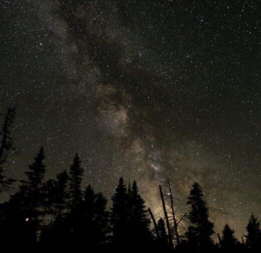 dark skies and stars