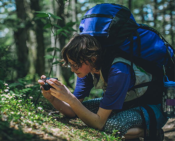 individual taking photos of mountain plants