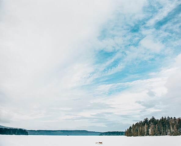blue skies over maine lake
