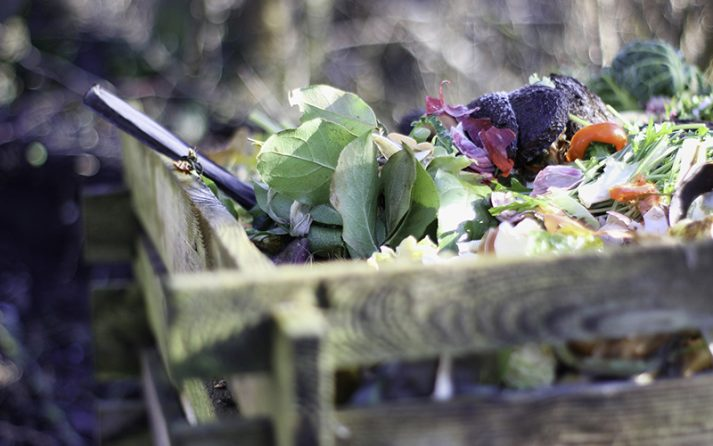 Composting helps reduce your carbon footprint by turning food waste into nutrients to grow more food.