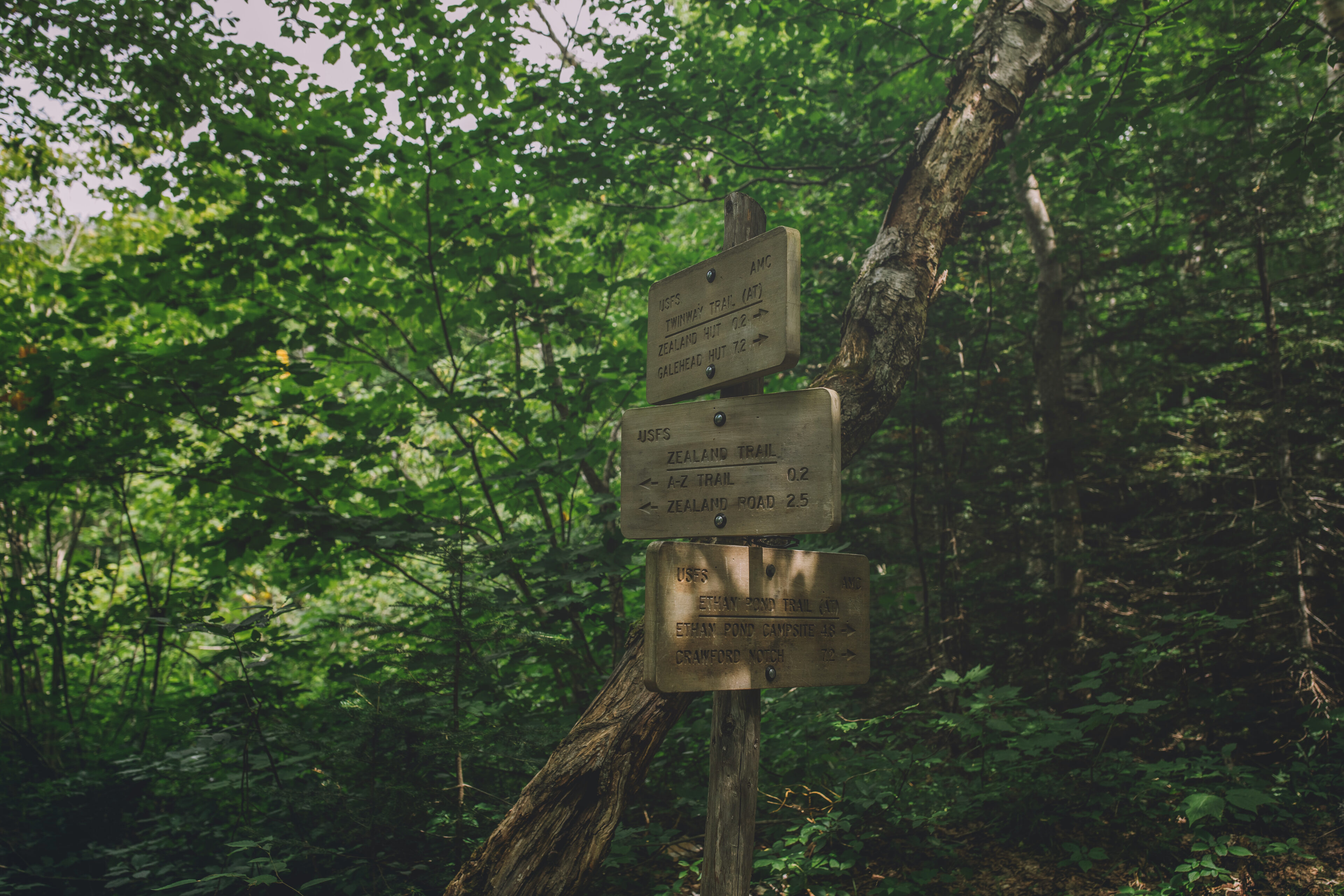 AMC trail signs