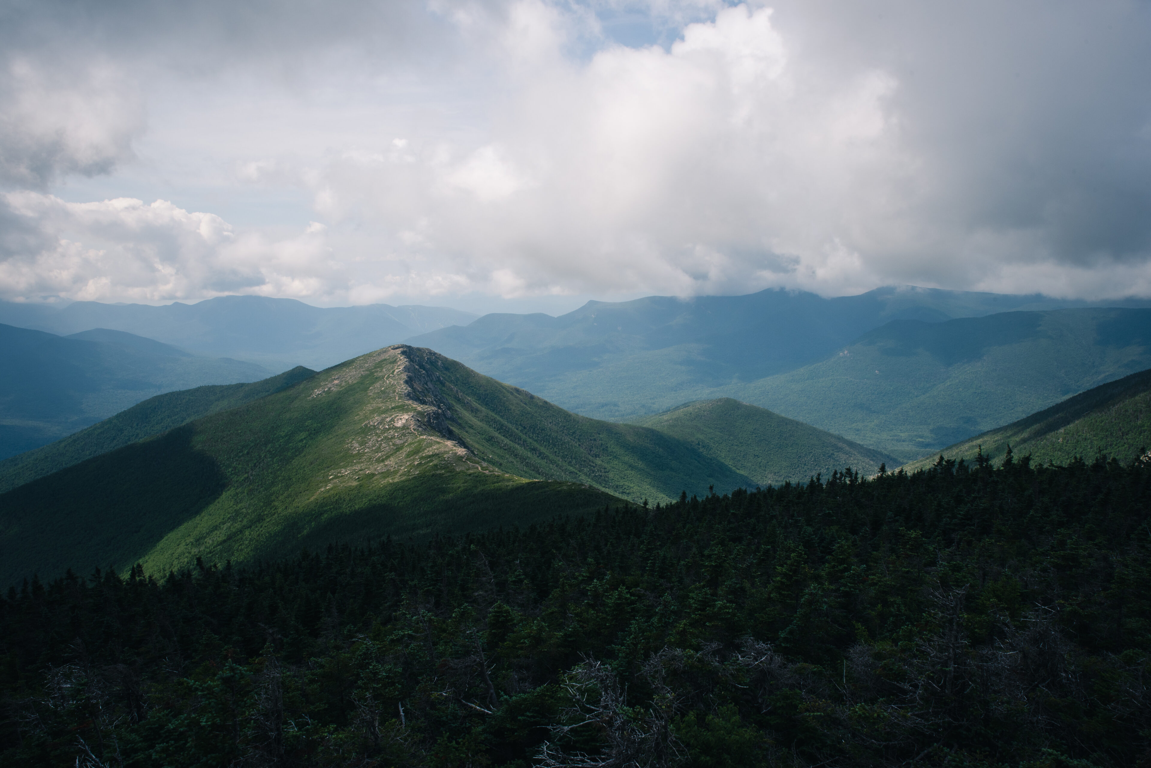 tracing the white mountains