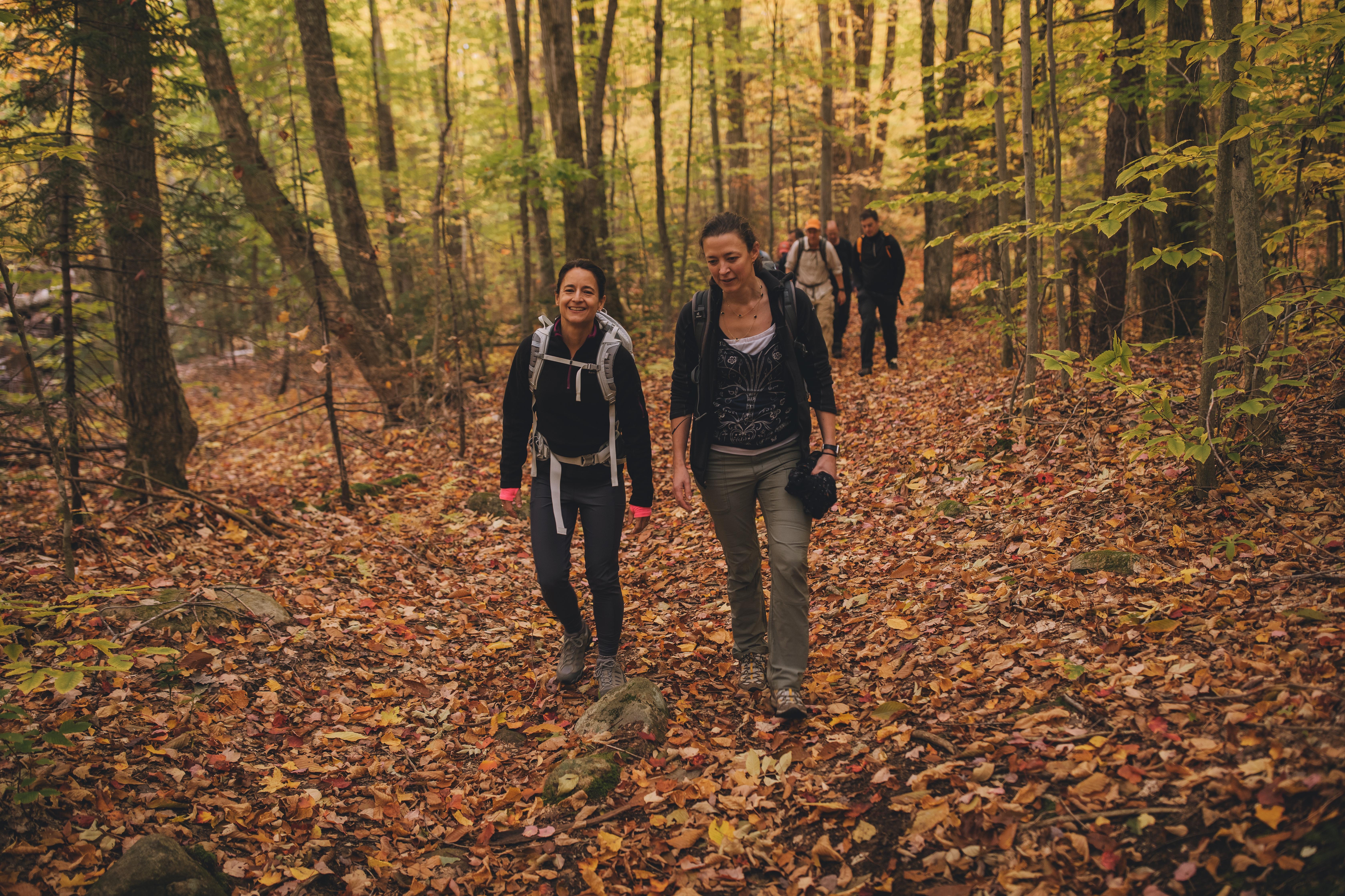 fall hiking near Cardigan Lodge
